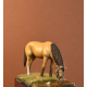 Light cavalry horse